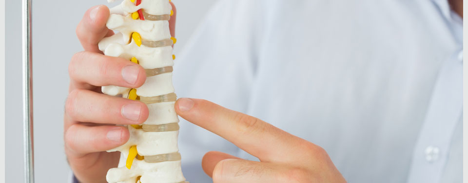 EH-Osteologie-960x375